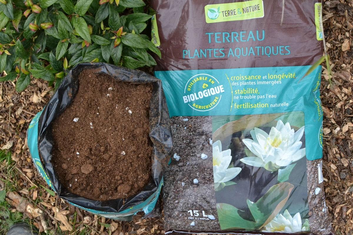 plante aquatique terreau